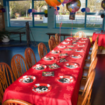 Kids Parties at Happy Mount Park